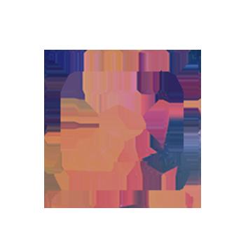 gerenciador_icon